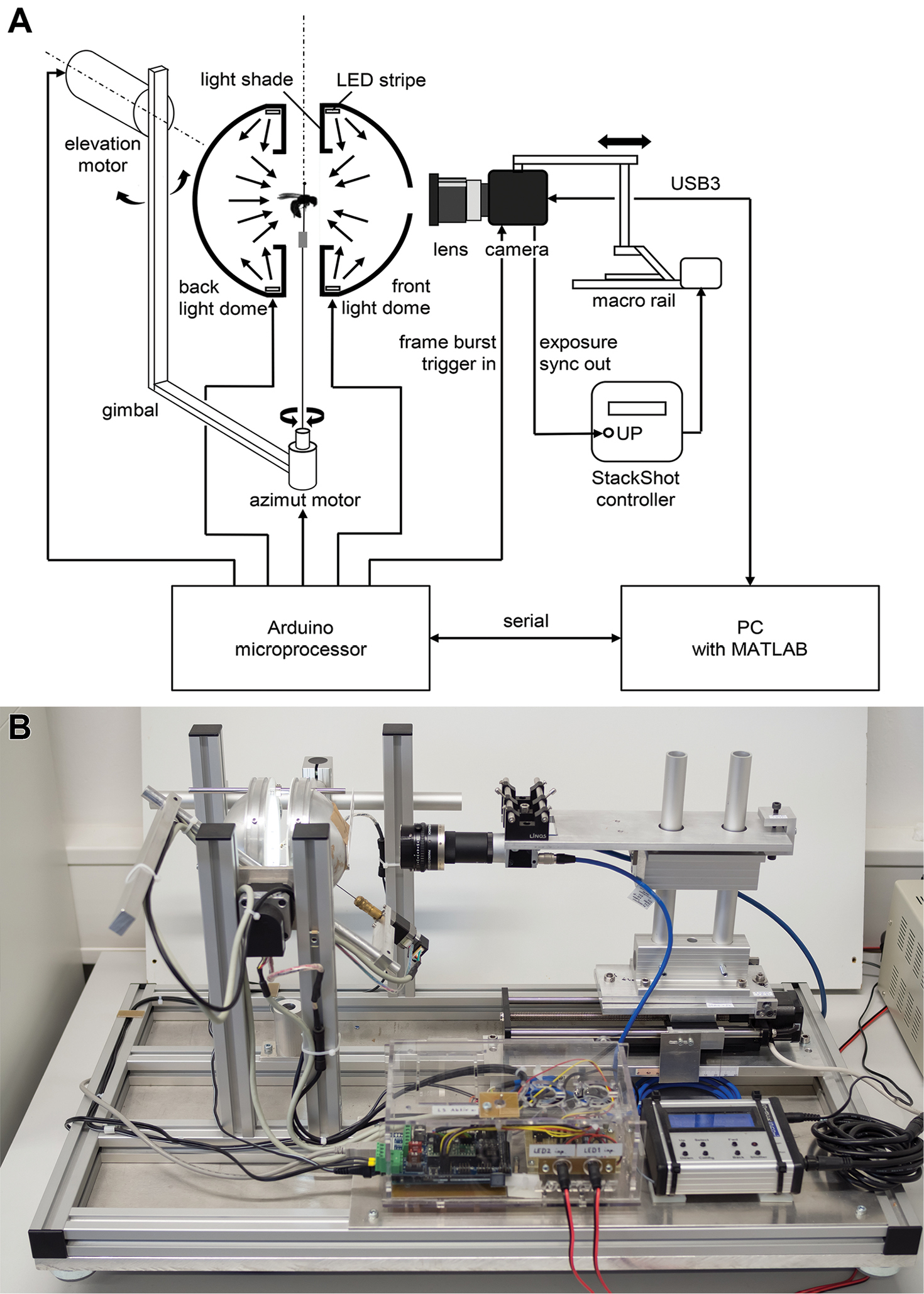 An automated device for the digitization and 3D modelling of insects