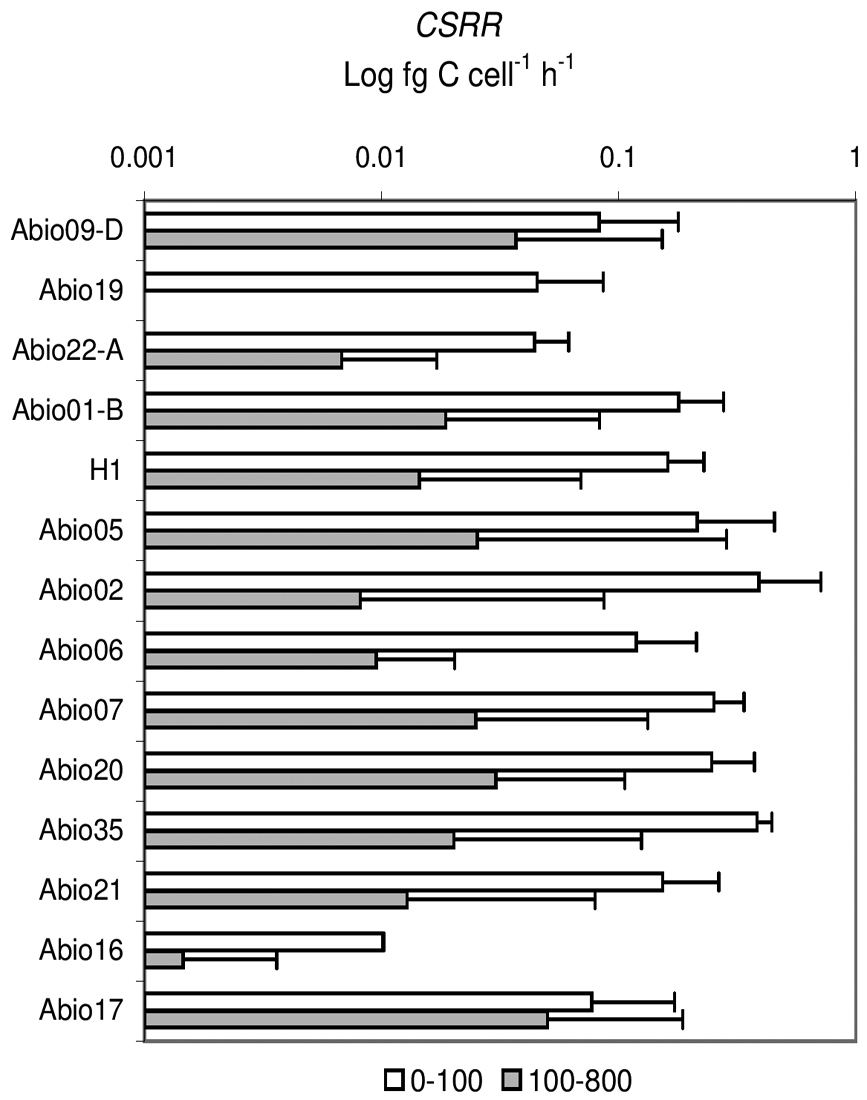 Microbial metabolic rates in the Ross Sea: the ABIOCLEAR Project