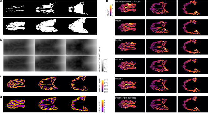 Laminar Python: tools for cortical depth-resolved analysis