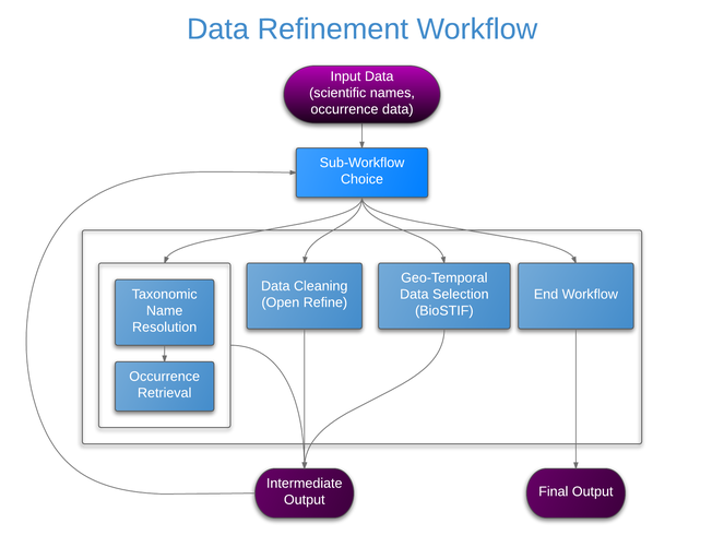 A semi-automated workflow for biodiversity data retrieval, cleaning