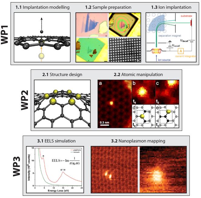 Heteroatom quantum corrals and nanoplasmonics in graphene