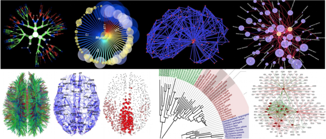 Graph-based clinical diagnosis and prediction using multi